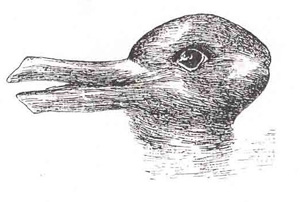 duck-rabbit-illusion